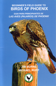 A Beginner's Field Buide to Birds of Phoenix